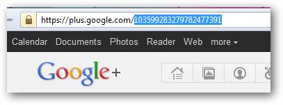 Adicione um widget do Google Plus ao seu site 2