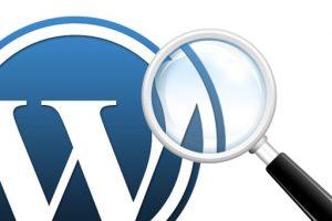 Melhorando o SEO da busca do Wordpress